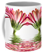 Double Pink Gerbera Flood Coffee Mug