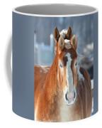 Double Stare Coffee Mug