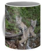 Double Trouble Coffee Mug by Sandra Bronstein