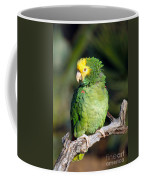 Double Yellow Headed Parrot Coffee Mug