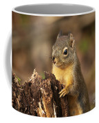 Douglas Squirrel On Stump Coffee Mug