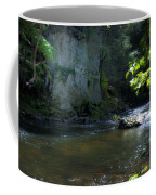 Dowlin Forge Park - Brandywine Creek Coffee Mug