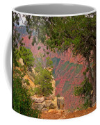 Down Into The Grand Canyon Coffee Mug