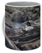 Down Tree Along Creek Coffee Mug