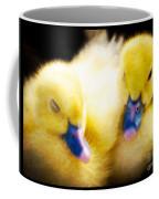 Downy Ducklings Coffee Mug
