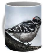 Downy Woodpecker 3 Coffee Mug