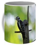 Downy Woodpecker 7448 Coffee Mug