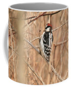 Downy Woodpecker In Brush Coffee Mug