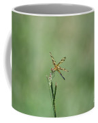 Dragon Fly 3 Coffee Mug
