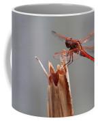 Dragon Fly- Br Coffee Mug