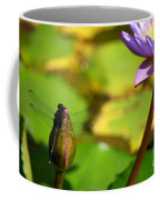 Dragon Fly On Bud And Water Lily Horizontal Number One Coffee Mug