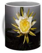 Dragon Fruit Blooming At Night I Coffee Mug