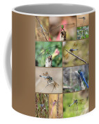 Dragonfly Collage 3 Coffee Mug