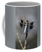 Dragonfly Common Whitetail Coffee Mug