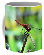 Dragonfly Hard At Work Coffee Mug