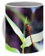 Dragonfly Hunt Coffee Mug