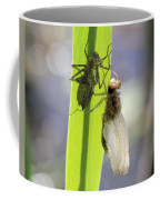 Dragonfly Metamorphosis - Fifth In Series Coffee Mug