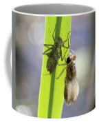Dragonfly Metamorphosis - Fourth In Series Coffee Mug