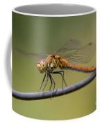 Dragonfly On A Wire Coffee Mug
