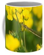 Dragonfly On Birds-foot Trefoil Coffee Mug
