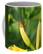 Dragonfly On Bud Coffee Mug