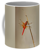 Dragonfly On Dead Reed Coffee Mug