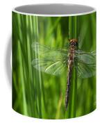 Dragonfly On Grass Coffee Mug