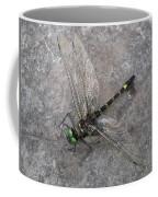 Dragonfly On Rock Coffee Mug