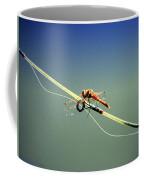 Dragonfly Resting Station Coffee Mug