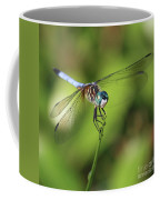 Dragonfly Square Coffee Mug