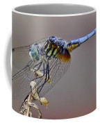 Dragonfly Stance Coffee Mug