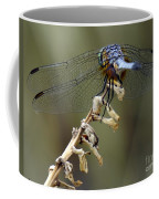 Dragonfly Wing Details Coffee Mug