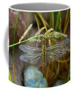 Dragonfly X-ray Coffee Mug