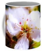 Dreamy Cherry Blossom Coffee Mug