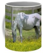 Dreamy Pony Coffee Mug