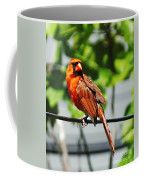 Dressed In Red Coffee Mug
