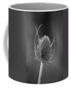Dried Common Teasel Coffee Mug