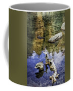 Driftwood And Reflections Coffee Mug