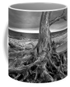 Driftwood On Jekyll Island Black And White Coffee Mug