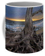 Driftwood On Jekyll Island Coffee Mug by Debra and Dave Vanderlaan