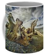 Driftwood On Rialto Beach Coffee Mug