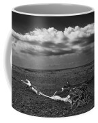 Driftwood On The Beach At Whitefish Point Coffee Mug