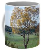 Driftwood Texas Coffee Mug