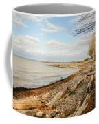 Driftwood On Shore Coffee Mug