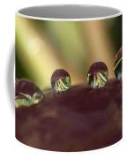 Droplets On An Apple Coffee Mug