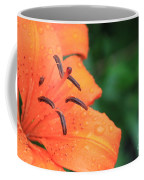 Droplets On Tiger Lily Coffee Mug
