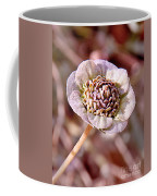 Dry Bloom Coffee Mug