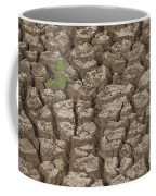 Dry Cracked Mud  Coffee Mug