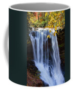 Dry Falls North Carolina Coffee Mug