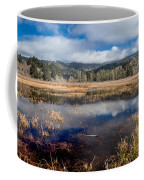 Dry Lagoon In Winter Panorama Coffee Mug